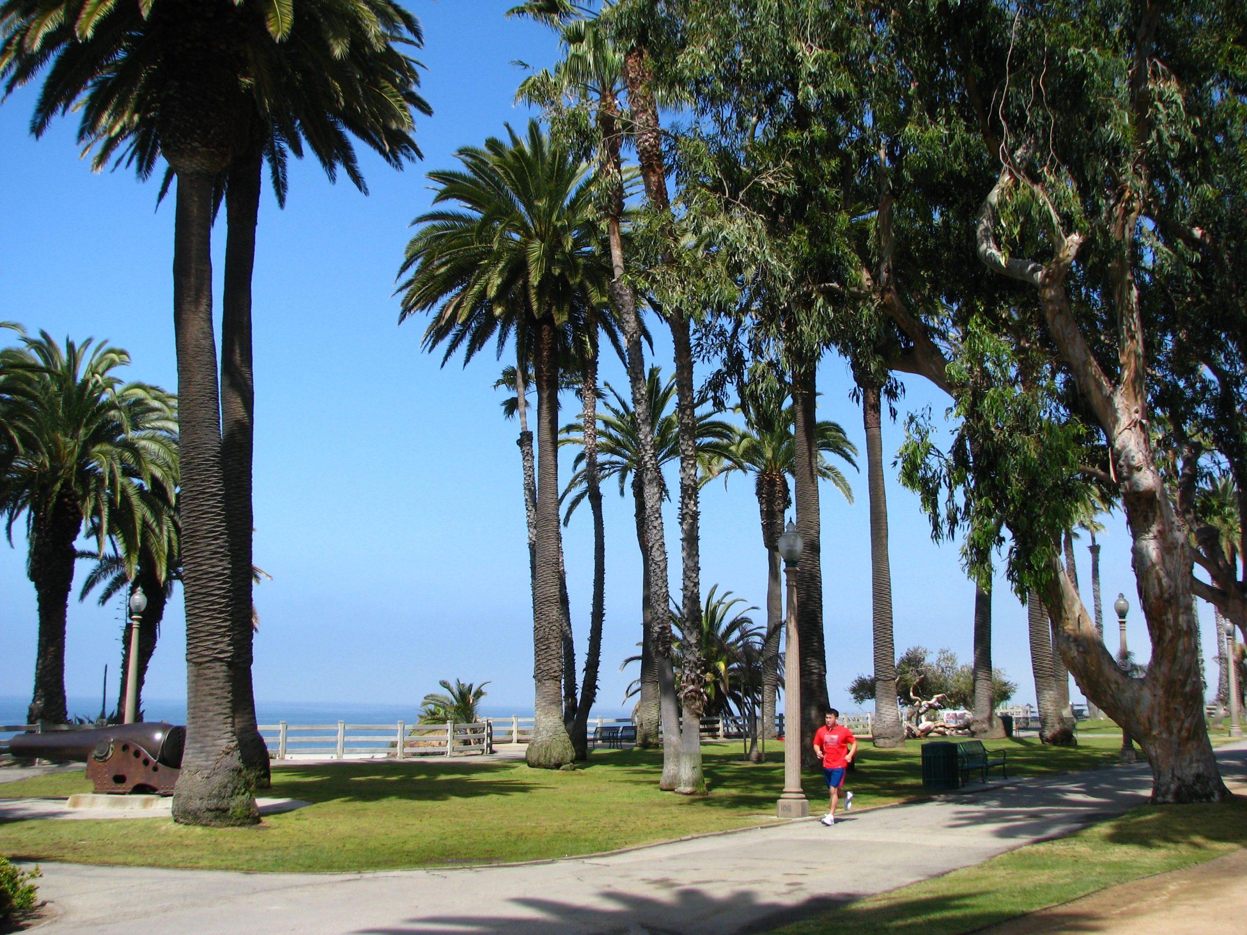 Panduan Santa Monica dan Venice Beach di Abbot Kinney Boulevard