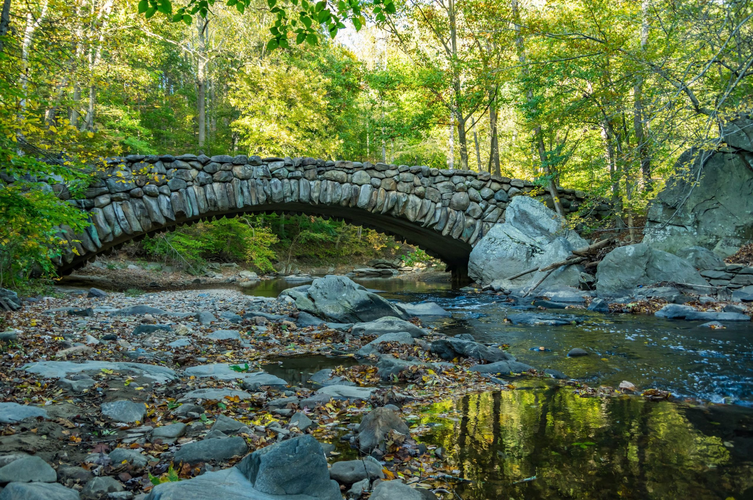 Menikmati Keindahan Taman Rock Creek DiWashington DC