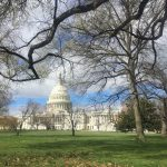 Menikmati Dua Hari di Washington DC